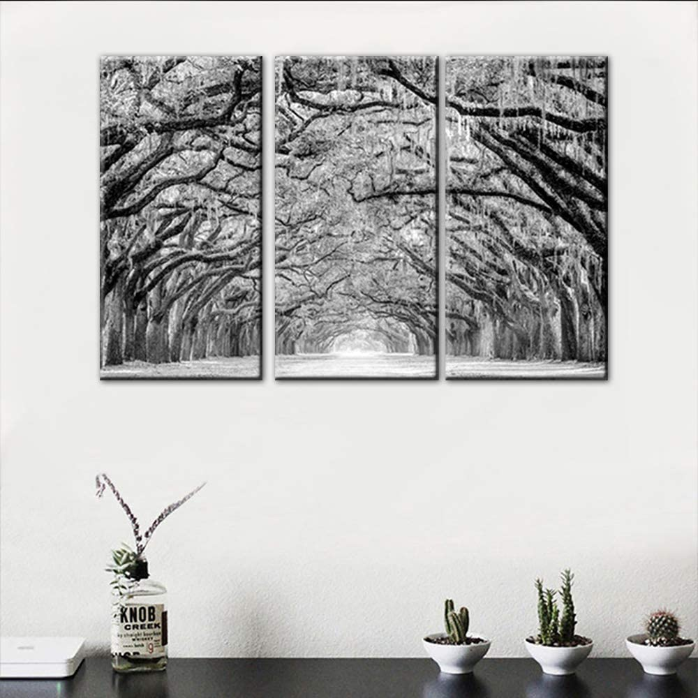 TUMOVO 3 Panels Framed Canvas Wall Black in White and Tree Mesa Mall Art Our shop OFFers the best service