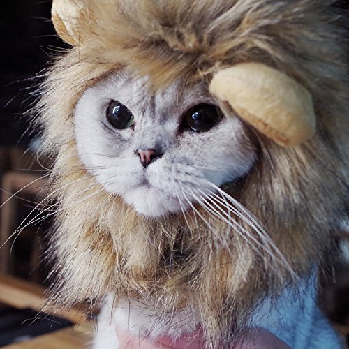 Bello Luna Lion Hair Copricapo per cani e gatti piccoli, Lion Mane parrucca Costume cosplay per Halloween Festa di Pasqua Festival Party Activity