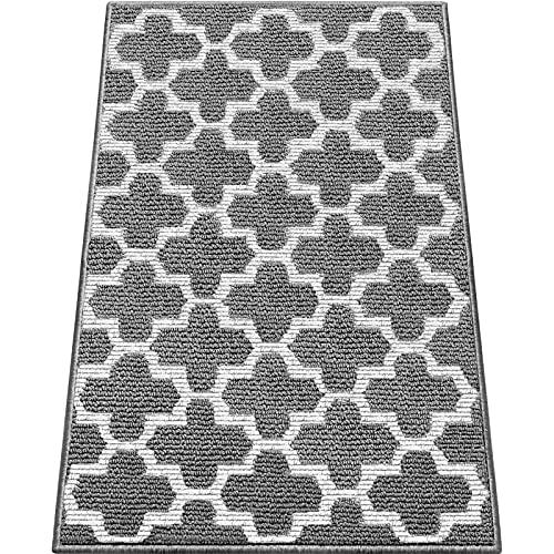 WISELIFE Door Mat Indoor Outdoor Floor Mat,20'x32', Non-Slip Absorbent...