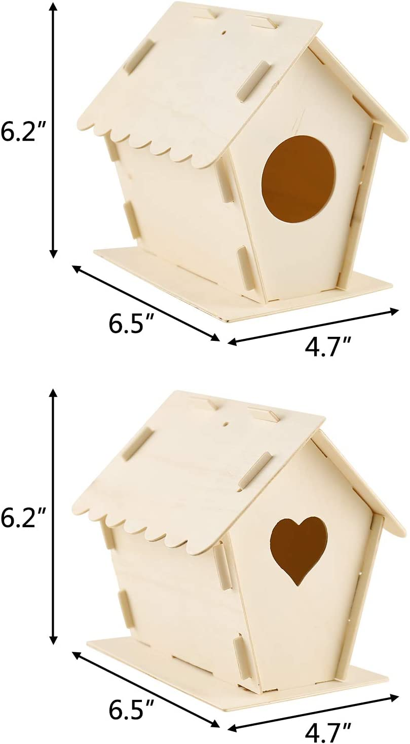 GARDWENS DIY Bird House Kit for Kids 2 Pack Big Wooden Birdhouse Kits Build and Paint Creative Arts Crafts Hanging Kit Suitable for Girls Boys Age 3-12 Activities Decoration