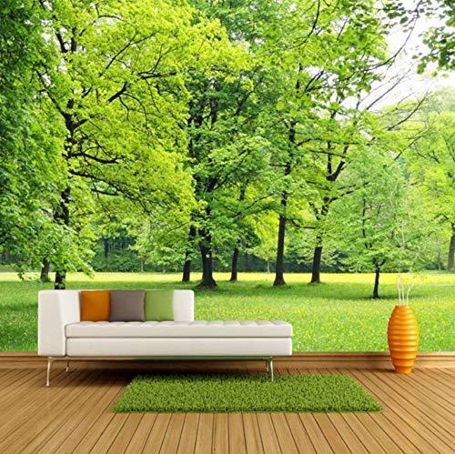 Benutzerdefinierte Fototapete Grüner Wald 3D Foto Hintergrund Wand Dekorationen Wohnzimmer Sofa Bett Moderne Stroh-Tapete(W)300X(H)210Cm