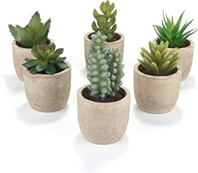 Set Of 6 Artificial Succulent Plants Small Faux Fake Cacti With Grey Pots Ideal For Home Office And Outdoor Decor M W Amazon Co Uk Kitchen Home