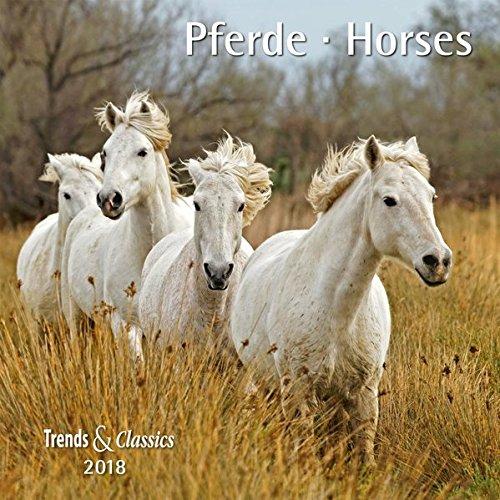 Pferde Horses 2018 - Broschürenkalender - Wandkalender - mit herausnehmbarem Poster - Format 30 x 30 cm