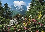 Clementoni 34518.2Sasso Lungo-Long Kofel, Val Gardena, 4000 piezas de Clementoni