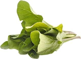 Sow No GMO Mustard Komatsuna Japanese Spinach Mustard Non GMO Vegetable 1000 Seeds