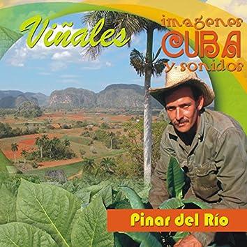 Colección Imágenes y Sonidos de Cuba: Viñales