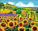 Pintura por números para niños y principiantes kit de pintura pintura acrílica de alta calidad pintura al óleo (sin marco) - Sunflower Garden