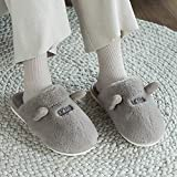 NVSRZTX Zapatillas de algodón de Felpa de Dibujos Animados par Animal de Baotou Estar por Casa para Niñas Niños Otoño Invierno Mujer Hombres Interior Caliente Suave Dibujos Animados Zapatos,F,39