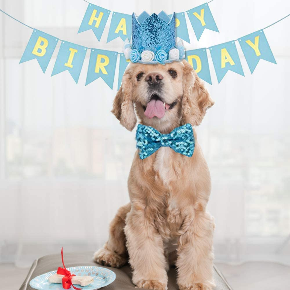 Cat Birthday Presents Pet Party Celebration Decoration for Cat Dog Hat and Number Suit Banner Bow Tie None//Brand Heiqlay Pet Birthday Party Supplies Balloon 23pcs, blue Dog Presents Birthday