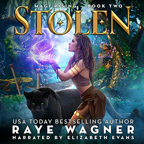 Stolen audiobook cover art