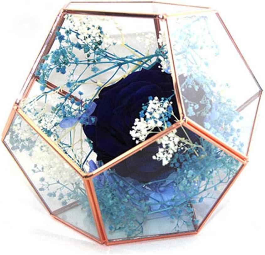 Rose Gold Geometric 超特価 Terrarium Glass Pot Planter Flower Pla 永遠の定番モデル