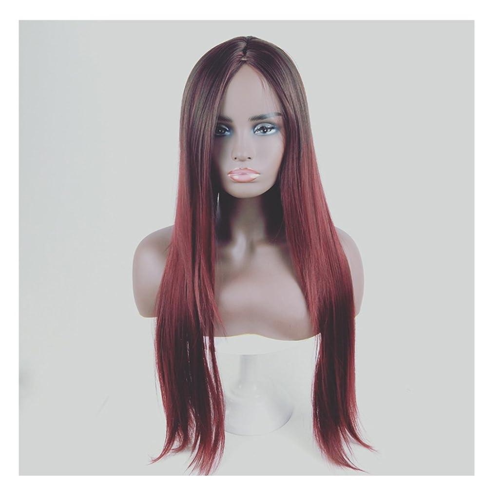 気候自伝コートJIANFU 合成 長い ストレート ヘア カラー グラデーション フル ウィッグ女性 ロングバンズ 耐熱 コスプレ/パーティー (Color : Black Gradient Wine Red)