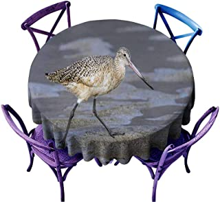 Acelik Stain Resistant Round Tablecloth,Marbled Godwit on The Sand at Malibu Lagoon,Table Cover for Home Restaurant,43 INCH