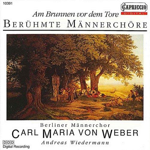 6 Lieder, Op. 33 (text by J. Mosen): 6 Lieder, Op. 33: No. 1. Der traumende See