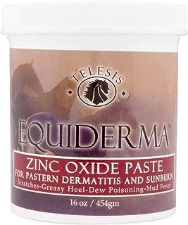 Equiderma Zinc Oxide Paste for Horses, 16 Ounces Each