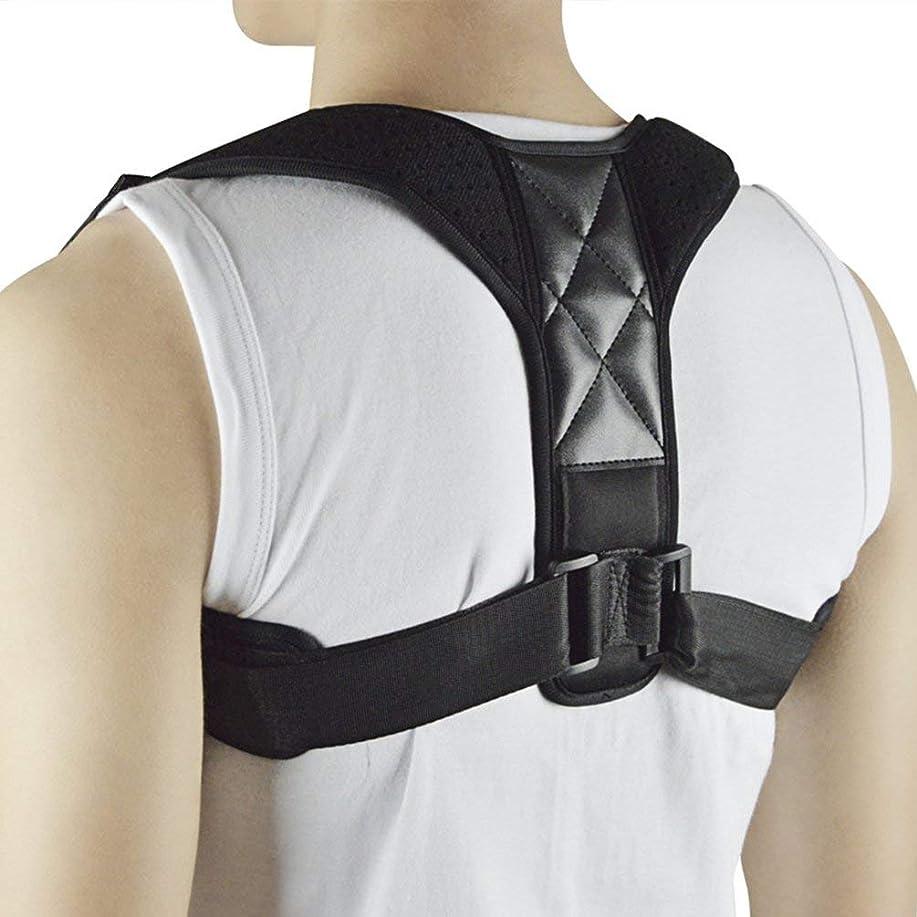 腹部瞬時にジャンプWT-C734ザトウクジラ矯正ベルト大人の脊椎背部固定子の背部矯正 - 多色アドバンス