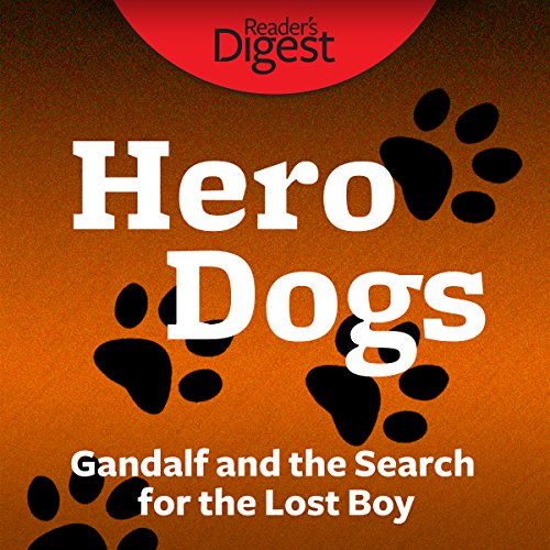 Gandalf and the Search for the Lost Boy audiobook cover art