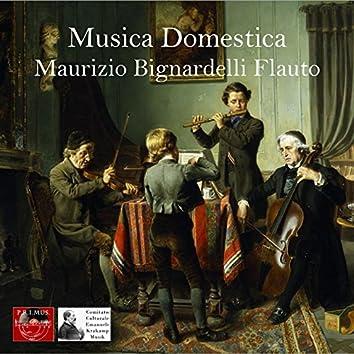 Musica domestica