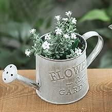 m·kvfa Vintage Metal Iron Barrel Retro Flower Succulent Pot Vase Bucket Home Decoration Watering Can for Gardening or Floral Arrangements (A)