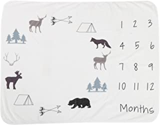 Memory Blankets, Receiving Blanket Baby Blanket Baby Growth Chart Blanket for Home(Arctic)