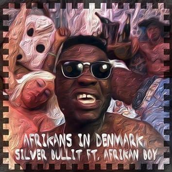 Afrikans In Denmark (feat. Afrikan Boy)