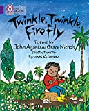 Twinkle, Twinkle, Firefly: Band 08/Purple (Collins Big Cat) (English Edition)