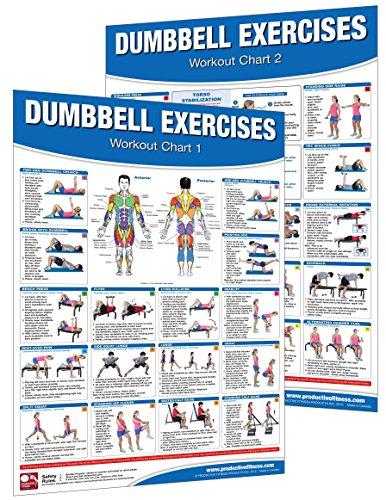 Preisvergleich Produktbild Dumbbell Workout Poster / Chart Set: Shoulder Training - Dumbbell Exercises Poster - Dumbbell Workout Chart - Dumbbell Workout Poster - Dumbbell Exercises ... Training - Fitness Wall Charts - Strength