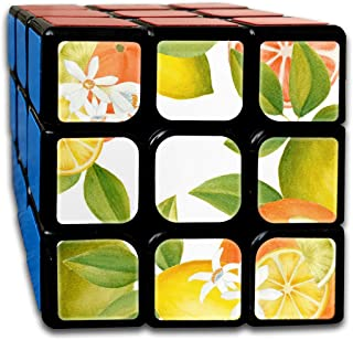 Speed Cube 3x3 Personalized Sticker Smooth Watercolor Citrus Clipart Magic Cube Puzzles Toys (56mm)
