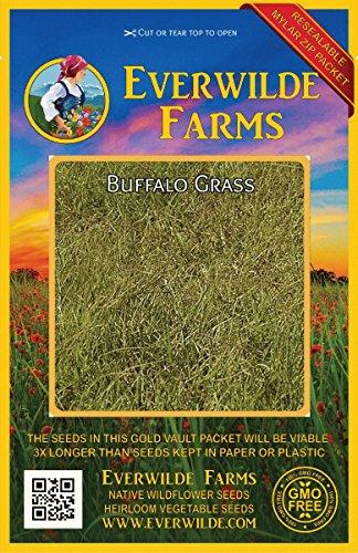 1000 Buffalo Grass Native Grass Seeds - Everwilde Farms Mylar Seed Packet
