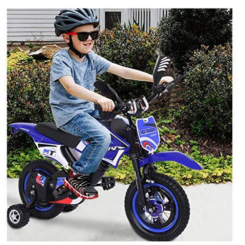 Kids Bike Boys Girls Freestyle Bicycle 12 inch with Training Wheels, Kickstand Child's Bike, Reinforced Frame (Blue)