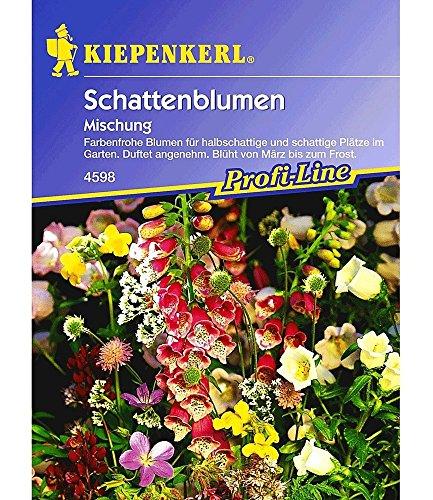 Kiepenkerl Schattenblumen 'Mischung', 1...