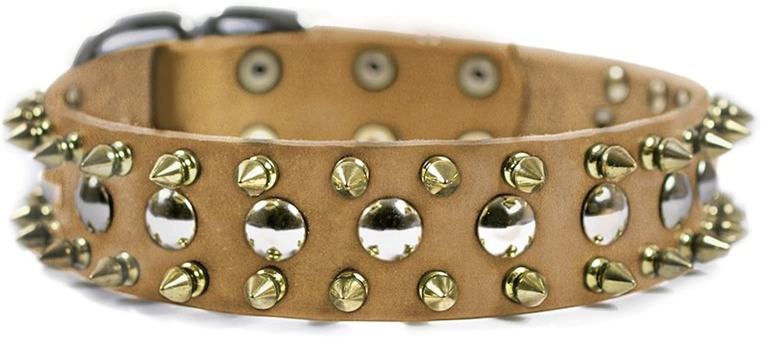 Dean and Tyler  goldEN SPIKE  Dog Collar With Nickel Hardware  Tan  Size 46cm by 4cm Width  Fits Neck Size 41cmes to 51cmes.