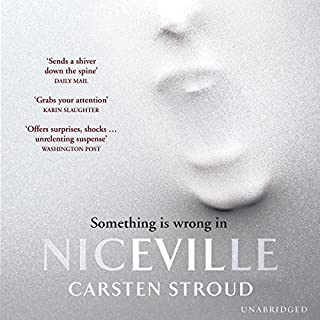 Niceville cover art