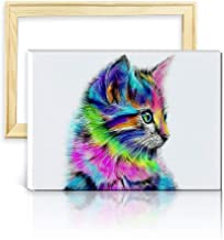 ufengke Wooden Frame Colorful Cat 5D Diamond Painting Kits DIY Full Drill Diamond Embroidery Cross Stitch Sets for Beginners Craft Lovers