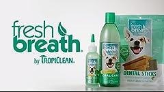 Amazon.com : PetSafe SSSCAT Spray Deterrent : Pet Deterrent ...