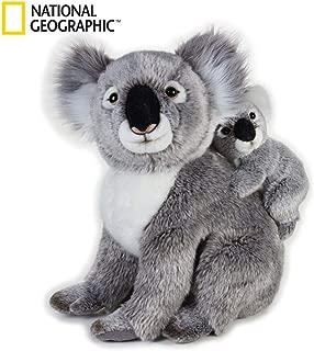 Koala com Baby National Geographic Cinza