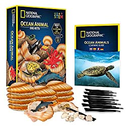 Toys-That-Start-with-O-Ocean-Animal-Dig-Kit