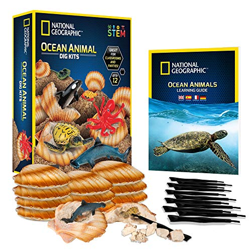 NATIONAL GEOGRAPHIC Ocean Animal Dig Kit – 12 Seashell Shaped Dig Bricks with Sea Creature Figure Inside, Party Activity with 12 Excavation Sets, Stem Toy For Boys & Girls Or Fun Party Favors