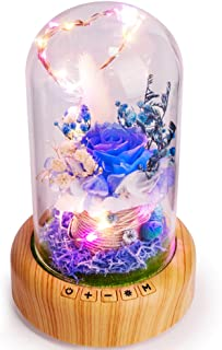 Best SWEETIME Blue Rose Lamp Real Preserved Rose in Glass Dome, Forever Flower Night Light with Bluetooth Speaker, Eternal Flowers Rose Gift for Her on Mother