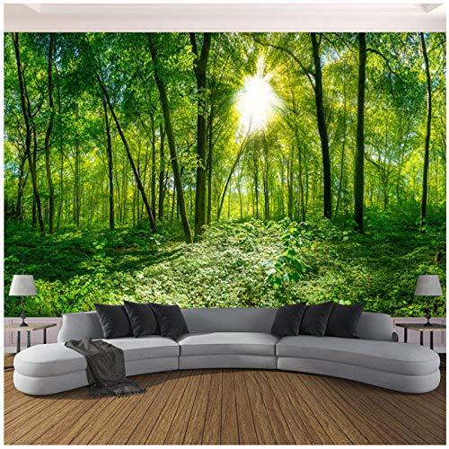 3D Fototapete Raum Grün Wald Bäume Natur Landschaft Großes Wandbild Tapete Für Wohnzimmer Moderne400 cm (B) x 250 cm (H) (13'1