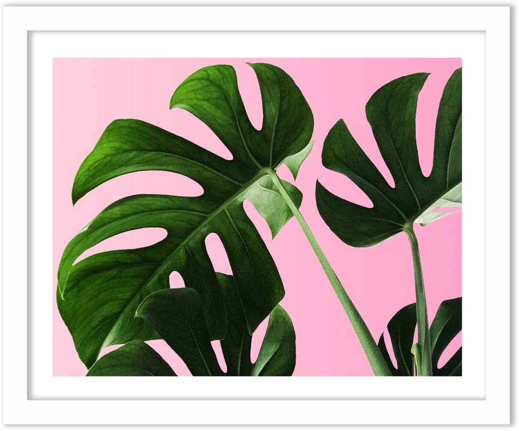 Humble Chic Monstera Palm Plant Leaf, 16x20 Horizontal Framed Wall Decor - Fine Art Plants Picture Poster Prints in White Frame for Home Decorations Living Dining Room Bedroom Bathroom Office