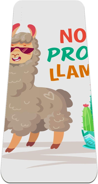 Ranking TOP17 Brand Cheap Sale Venue Yoga Mat Non Slip TPE Cool Doodle Alpaca Hi Llama Cartoon Animal