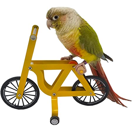 QBLEEV Bird Intelligence Training Toy,Parrot Puzzle Bicycle Toy for Small Medium Bird,Parrot Educational Table Top Trick Prop Toy,Bird Foot Talon Toy for African Grey Cockatoo Eclectus Conures,Yellow