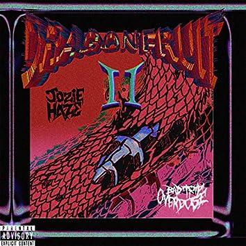 DRAGONFRUIT II