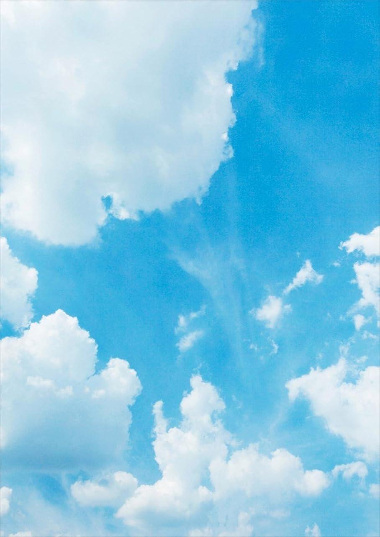 窓を洗う装置硫黄igsticker ポスター ウォールステッカー シール式ステッカー 飾り 728×1030㎜ B1 写真 フォト 壁 インテリア おしゃれ 剥がせる wall sticker poster 003474 写真?風景 空 写真 景色