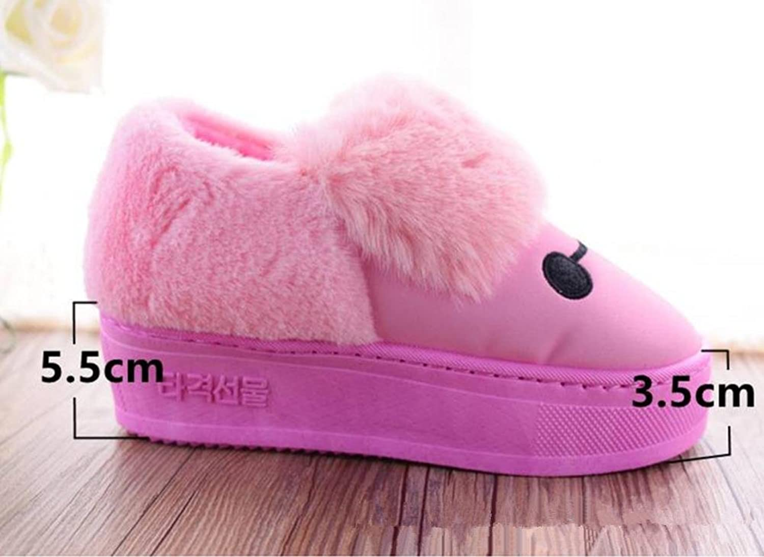DMMSS Ladies Autumn And Winter Slippers Cartoon Thick Cotton Slippers Soft Soles High-Heeled shoes On Non-Slip shoes Warm shoes