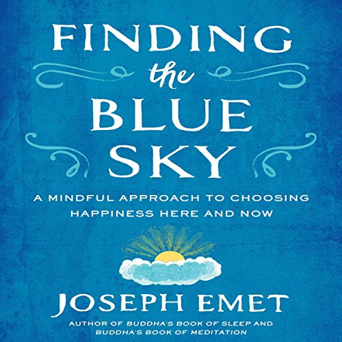Finding the Blue Sky audiobook cover art