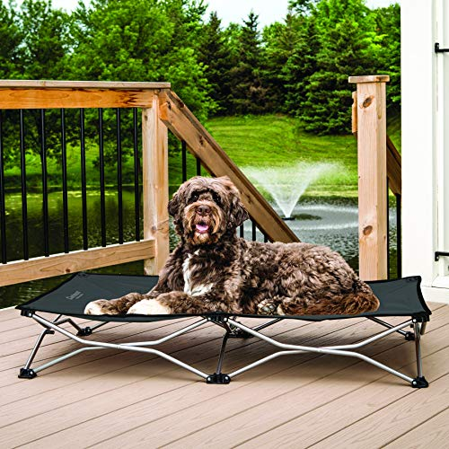 5. Carlson Elevated Folding Bed