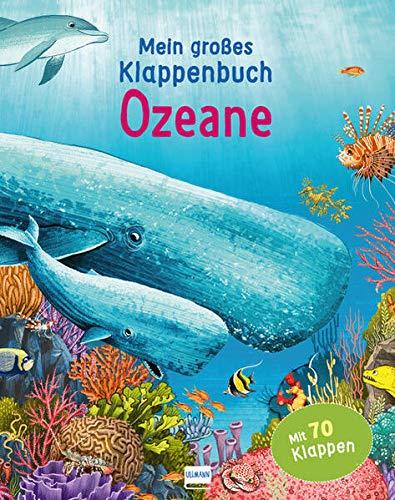 Mein großes Klappenbuch - Ozeane: mit 70 Klappen und spannenden Sachinformationen