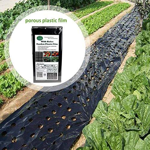 Lounayy Garten Pe Folie Gartenpflanze Schwarz Folie Basic Mode Landwirtschaftliche Pflanze Kunststoff Folie Perforierte Pe Folie Folie (95 Cm 10 Mt 5 Löcher 0,03Mm) Sale Garten Täglich Gebrauch Produk